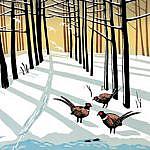 Woodland Pheasants