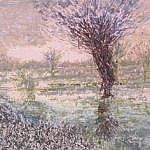 Pollarded Willow, Evening