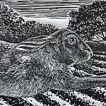 Sir Hare good day to you